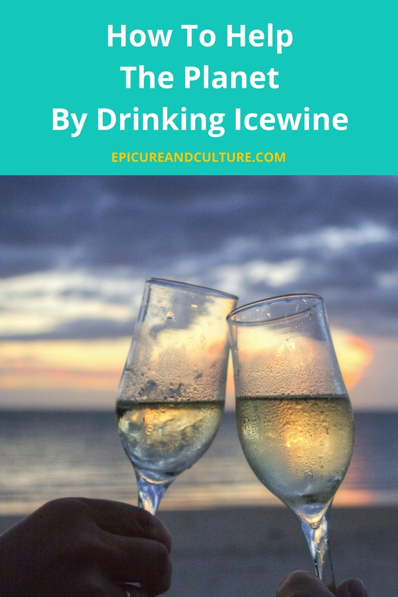 How to help the planet by drinking icewine