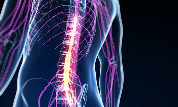 Cell Therapy Helps Spinal Cord Injuries Patients Regain ...