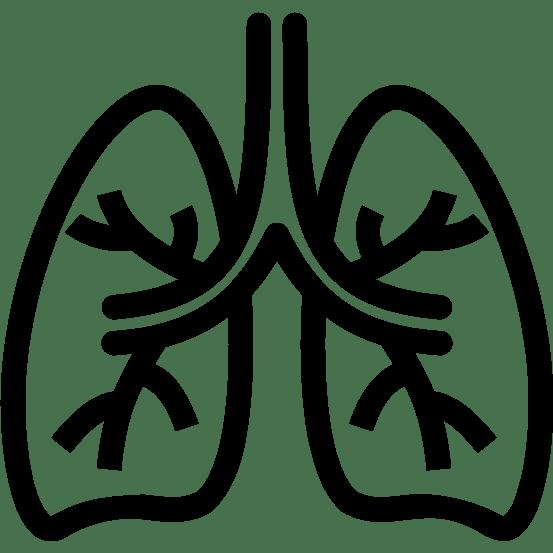 poumons icon