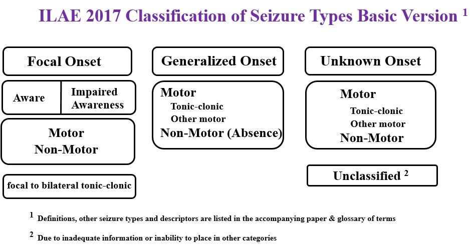 Seizure Education – Epilepsy Southwestern Ontario