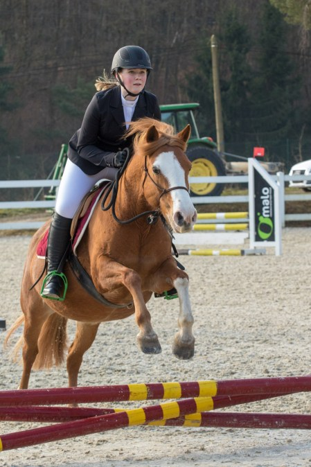 concours-equitation-saut-obstacles-equ-crin-olima-chantraine (13)