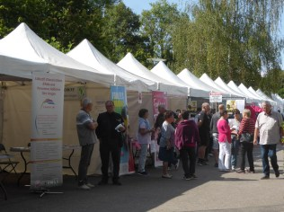 forum-des-associations-epinal (12)