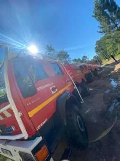 sapeurs-pompiers-renfort-vosges2