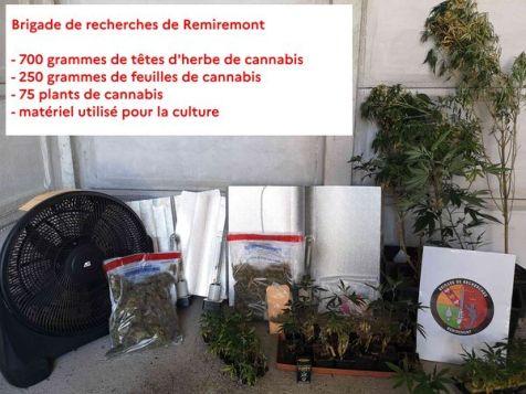 Cannabis_Gendarmerie-1