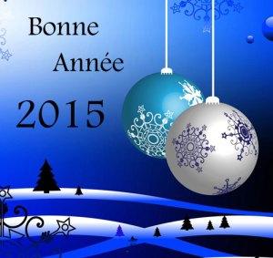 2015-01-02-Bonne-année