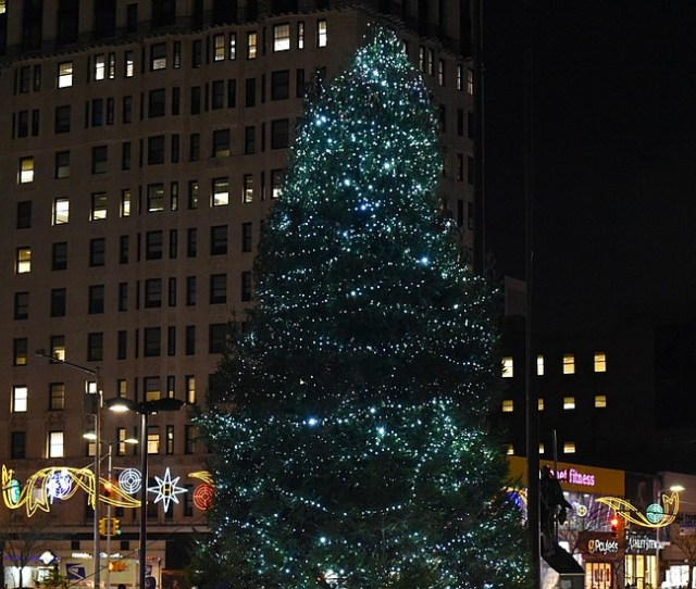 As The Harlem Christmas Tree Was Lit