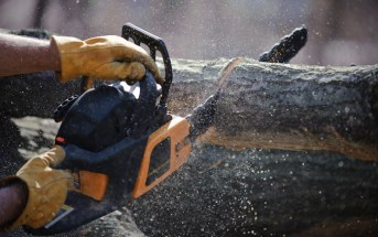 The Chainsaw Verdict