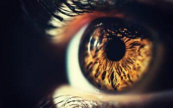 Eye spy a detached retina
