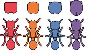 Mravenci naznačili obrácenou evoluci