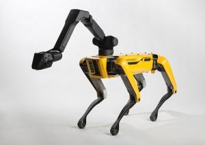 Společnost Boston Dynamics vylepšuje své robopsy pro boj proti koronaviru