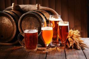 Zdravější pivo? Vědci poprvé upravili chmel moderní technologií CRISPR