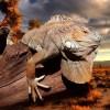 Přehled nejúchvatnějších národních parků na světě: To musíte vidět!