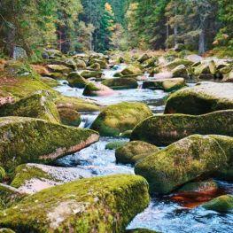 Přírodní zajímavosti Česka, které musíte vidět