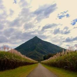 Pyramida Gympie má být důkazem, že starověcí Egypťané dopluli až do Austrálie