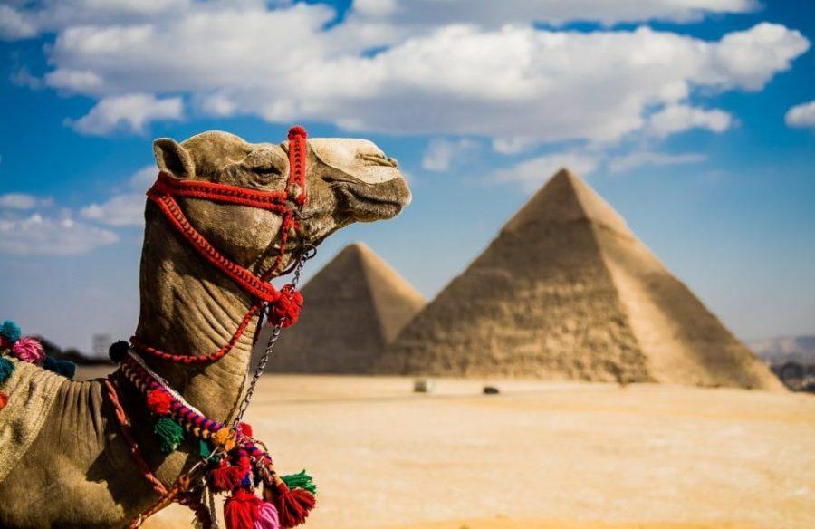 Kouzlo země faraonů