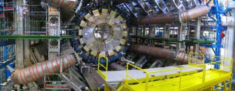 Lasička na dobrodružství v LHC doplatí životem.