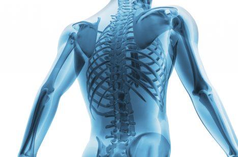10. Ačkoliv jsou kosti silnější než ocel, jsou z30% tvořeny vodou.