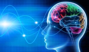 Neuromarketing: Nový obor pronikající do lidských mozků!