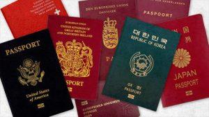 4 barvy, 4 druhy pasů: Jaký mají význam?