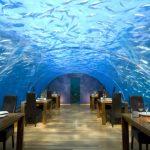 Jak vypadají nejpodivnější restaurace na světě?