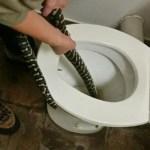 Žena v Austrálii usedla na toaletu a uštknul ji had! Kde se tam vzal?