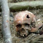 Válka v Bosně: Nizozemští vojáci sil OSN zvěrstvům pouze přihlíželi
