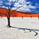 Klenot namibské pouště: Uhrančivá krása surrealistické krajiny
