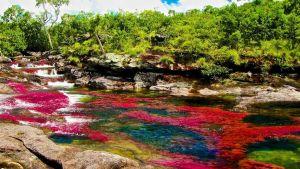 Když duha teče: Kde je nejbarevnější voda světa?