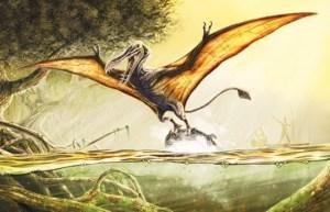 Kongamato: Létající lebka, která děsí Afriku!
