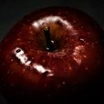 Tajemství rajské zahrady: Bylo zakázané ovoce opravdu jablko?