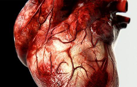 5. Lidské srdce vytváří dost tlaku na to, aby dokázalo vytrysknout krev až 10 metrů.