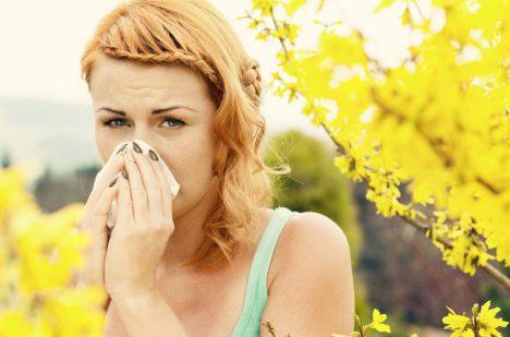 Trpíte alergiemi? Možná jste byli jako děti v moc sterilním prostředí.