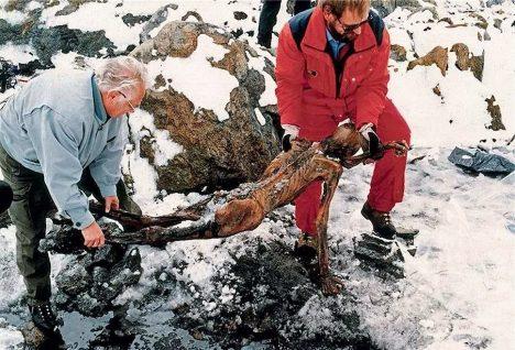 Když dvojice německých turistů 19. září 1991 objevila horní polovinu těla vyčnívající ze skalní prolákliny. Mysleli si, že narazili na tělo horolezce, ve skutečnosti objevili něco daleko pozoruhodnějšího – tělo pravěkého muže.
