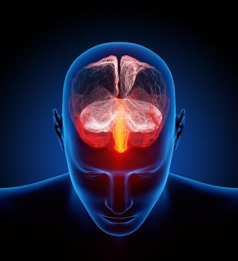 Podle posledních výzkumů mozek po zástavě srdce vysílá mimořádně silné impulzy, které jsou až osminásobně silnější než jeho běžná aktivita.