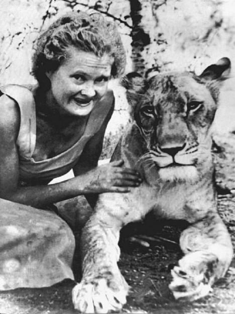 Joy Adamsonová svým příběhem lvice Elsy nadchne děti a mládež po celém světě.