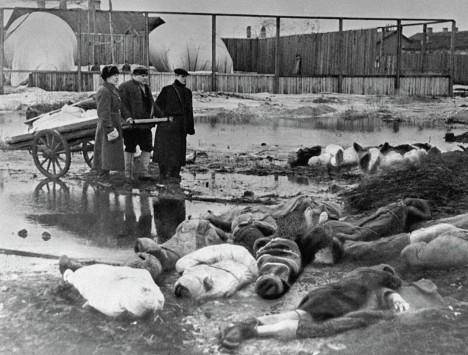 Mrtví se povalují všude po ulicích. Živí se často vrhají na jejich maso.