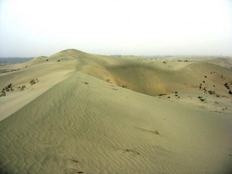 Mumie se nacházely v dokonale zachovalém stavu díky extrémně suchému počasí v oblasti Tarimské pánve.