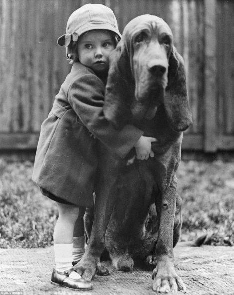 Pořídit si psa není během protektorátu jednoduché. Musíte prokázat svůj árijský původ.