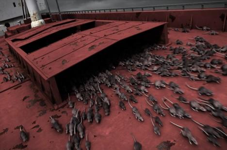Nakažené krysy na lodi? Podle všeho pouze bulvární kachna.