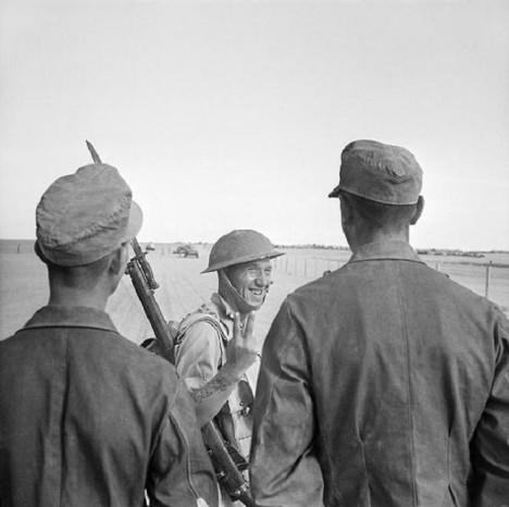 Vítězství v druhé bitvě u El Alameynu definitivně zvrátí vývoj války v severní Africe.