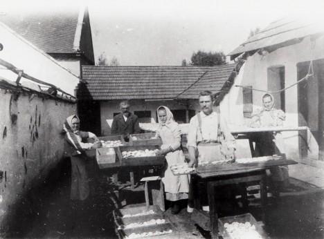 Ve vesnicích v okolí Olomouce se tvarůžky běžně sušily na dvoře.