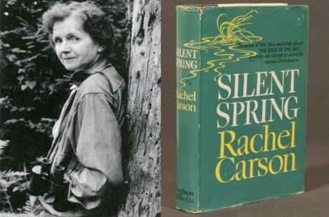 Kniha Rachel Carsonové je dodnes velmi kontroverzní.