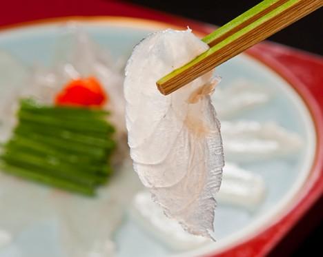 fugu_01