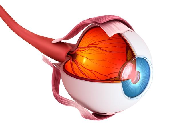 Oko má neporovnatelně lepší ostření.