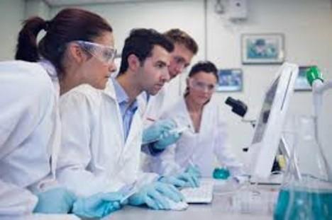 výzkumníci