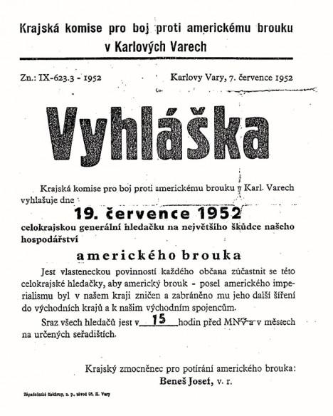 Vyhlášky vyzývající ke sběru amerického brouka se v 1. polovině 50. let objevují pravidelně.