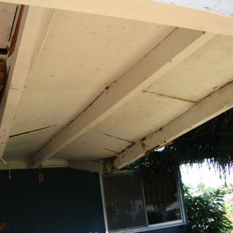 B. Roof leaks due to sagging beams cause extensive rot.
