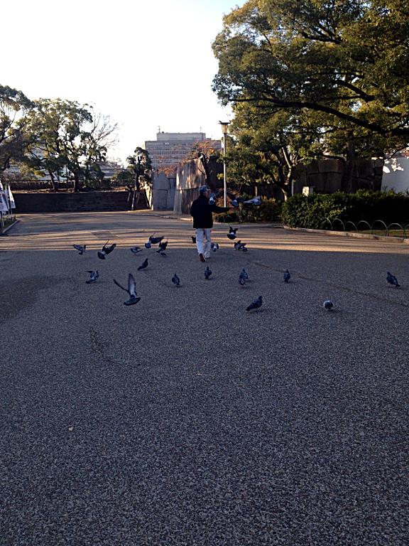 Osaka Castle: The Birdman