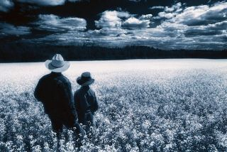 Father and son in a field of wildflowers