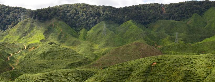 malaysia-paesaggio
